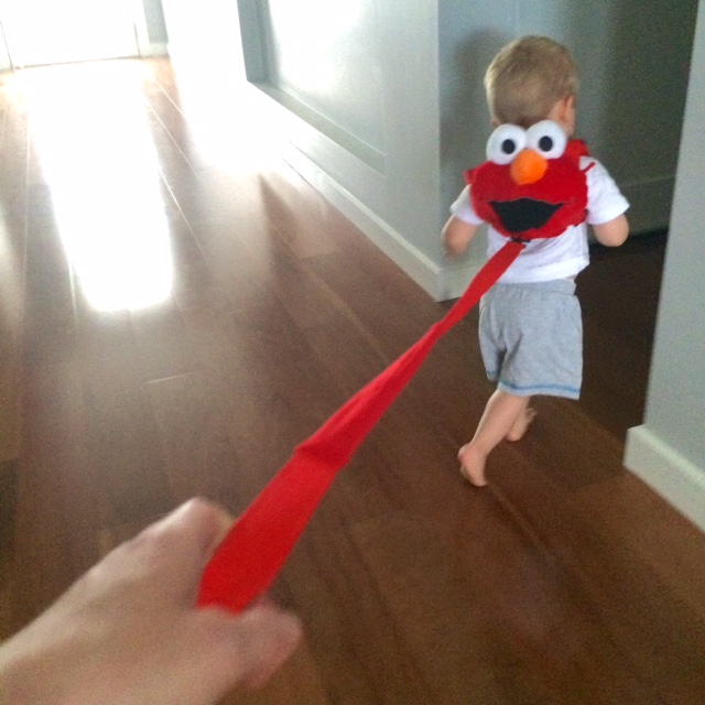 toddler wearing elmo safety harness