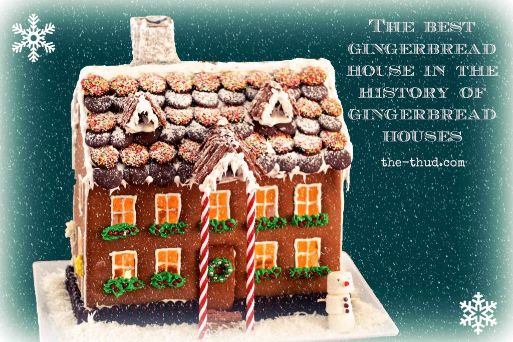 FREE TEMPLATE to make the best DIY gingerbread house EVER. Really clear instructions make this much easier to make than it looks. If you can bake a cookie, you CAN make this house.