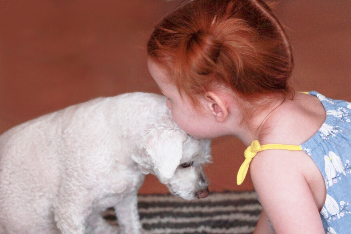 why every kid needs a dog I don't have kids and don't often think to make it a kid-friendly party, but i actually like kids and am almost always happy to have people bring their little ones, i just like a heads up so i can be sure to bathe my dogs (since kids looooove dogs and will end up hanging on them.
